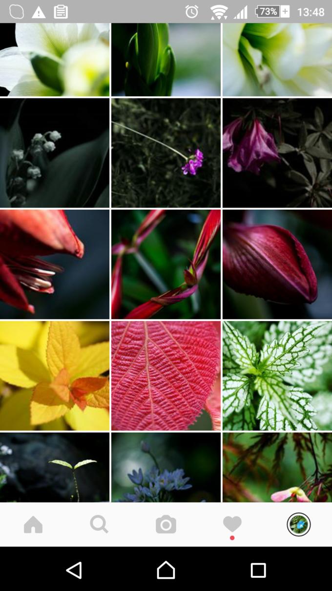 spice tea の Instagram