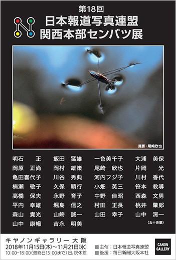 日本報道写真連盟 関西本部:第18回 日本報道写真連盟 関西本部センバツ展|キヤノンギャラリー 大阪