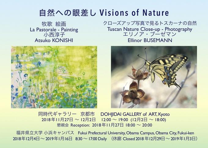 自然への眼差し Visions of Nature|同時代ギャラリー