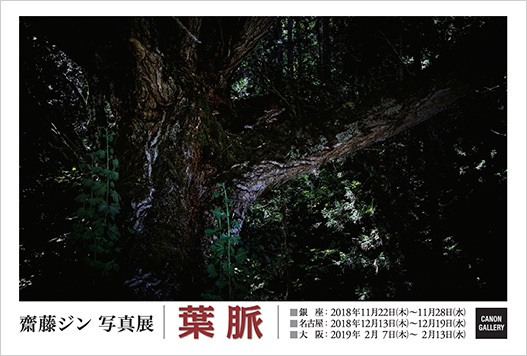齋藤 ジン 写真展:葉脈|キヤノンギャラリー 大阪