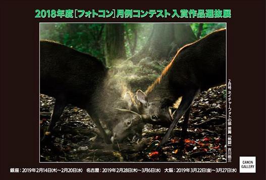 日本写真企画:2018年度フォトコン月例コンテスト入賞作品選抜展 キヤノンギャラリー 大阪